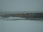 BNSF 5338